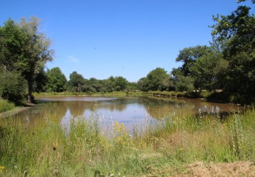 Vente propriétés de chasse : Propriété de chasse à vendre, forets ...